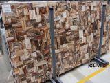 petro petrified wood